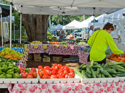 Our Tuesday Fresh Market days happen each week throughout the year